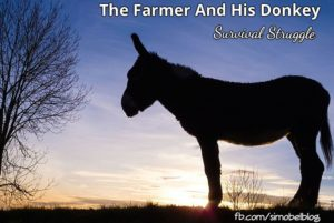 The Farmer And His Donkey – Survival Struggle